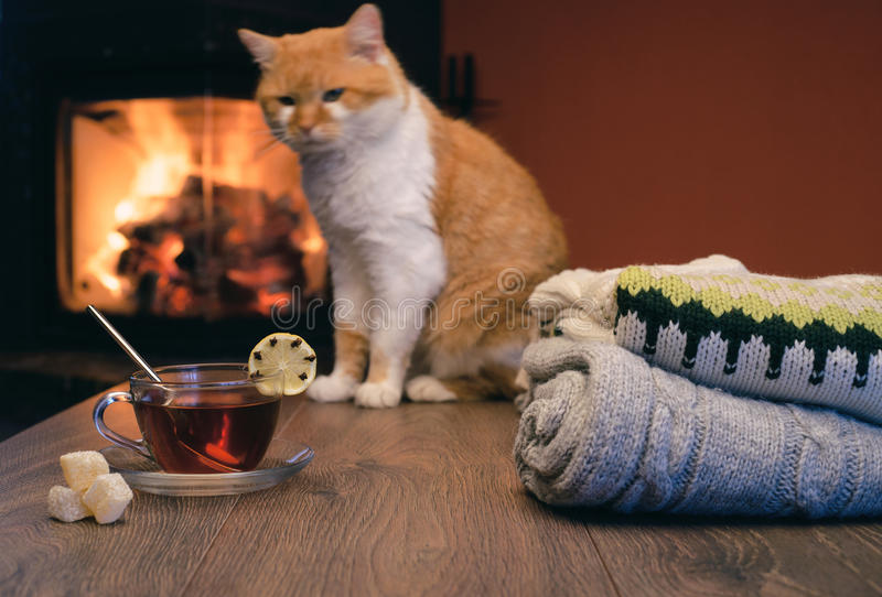 Sterta wygodni trykotowi pulowery i filiżanka gorąca herbata z cytryną dalej obraz royalty free