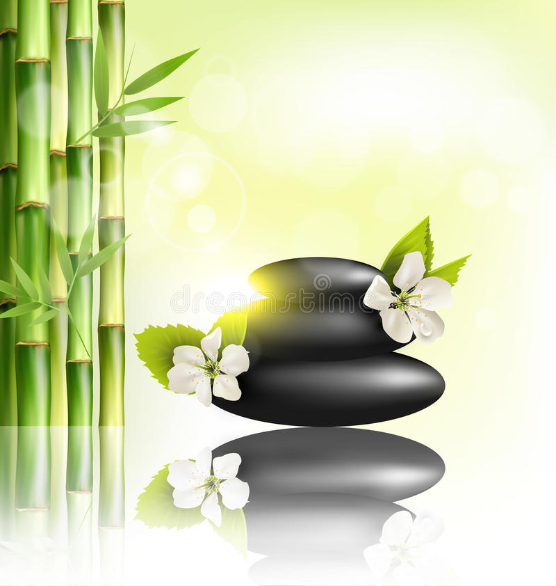 Sterta zdrojów kamienie z czereśniowym białych kwiatów światłem słonecznym i bambo ilustracji