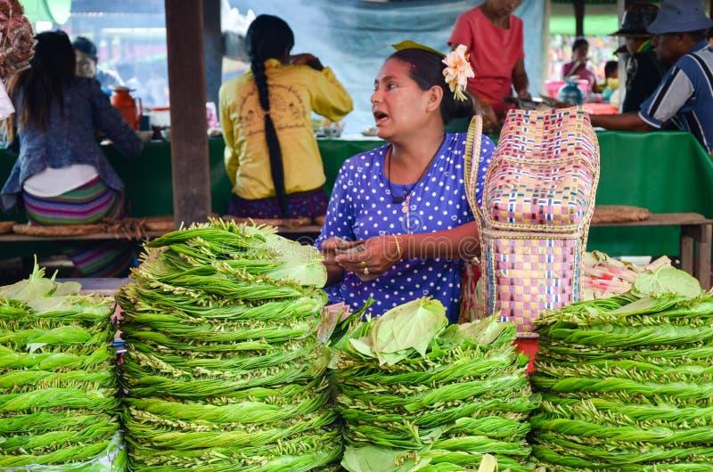 Sterty betel opuszczają dla sprzedaży przy rynkiem w Myanmar fotografia royalty free