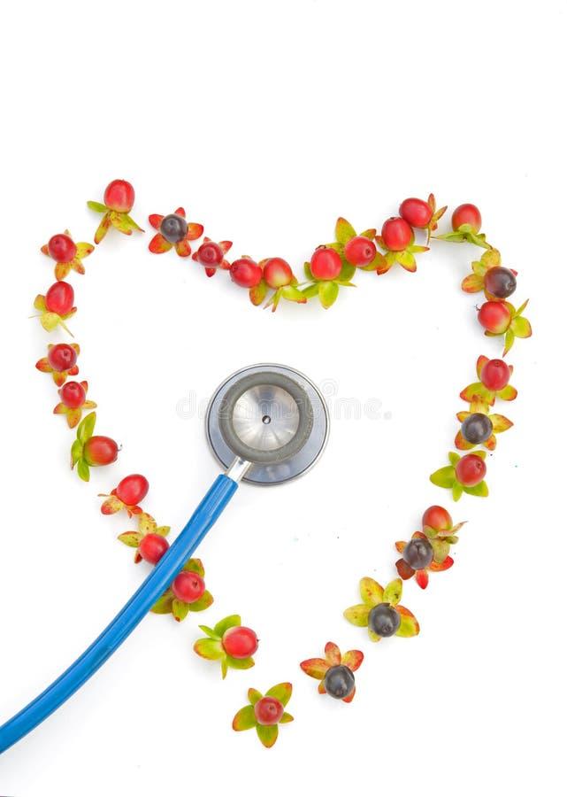 Stethoscoop met hartvorm. royalty-vrije stock afbeelding