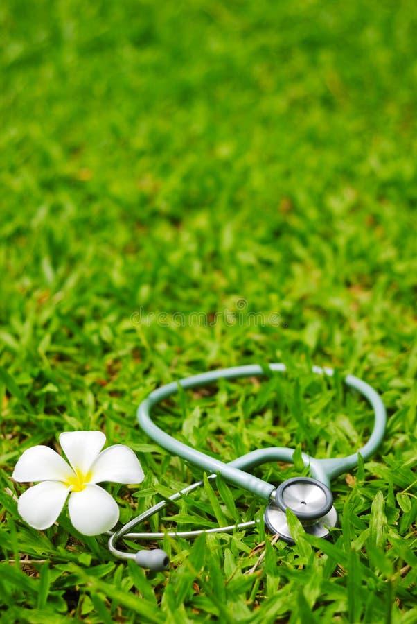 Stethoskop und Blume auf Gras stockfoto