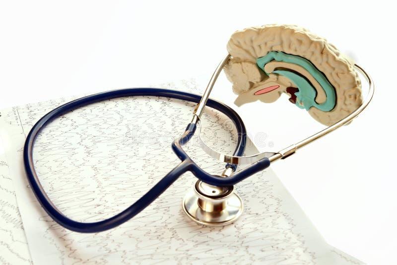 Stethoskop und Krankenblatt, die auf Weißrückseite liegen stockbild