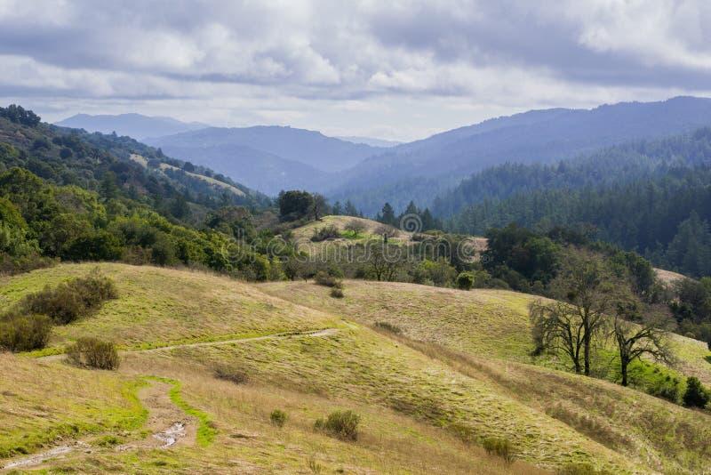 Stevens Creek-vallei; Santa Cruz-bergen op de achtergrond, de baaigebied van San Francisco, Californië royalty-vrije stock foto's