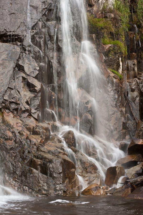 Stevenson cai no vale de Yarra imagem de stock
