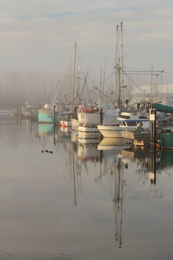 Steveston Harbor, Morning Fog royalty free stock image