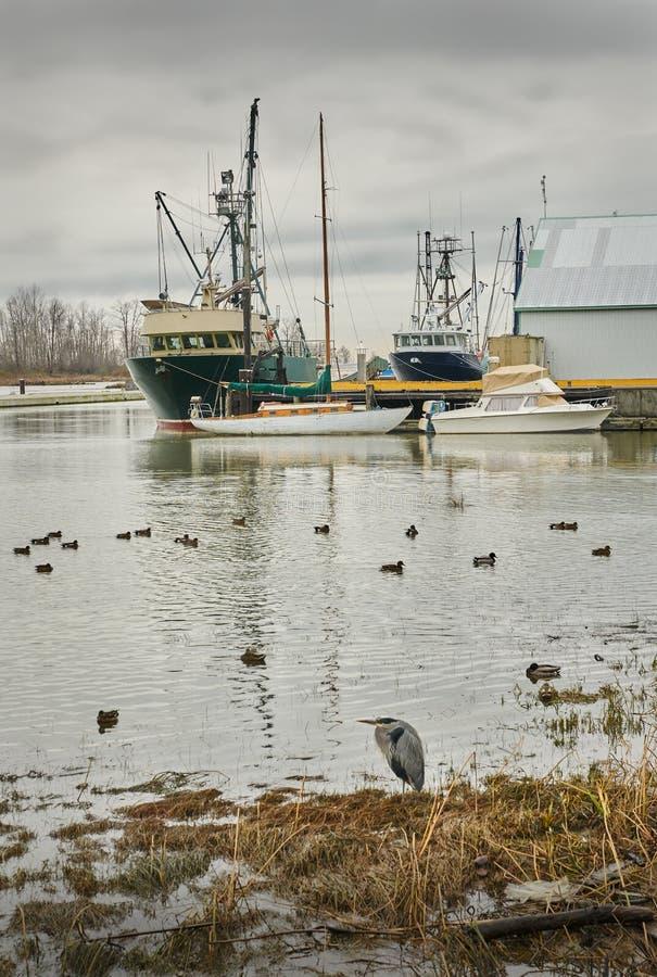 Steveston Harbor, Richmond, BC stock photography