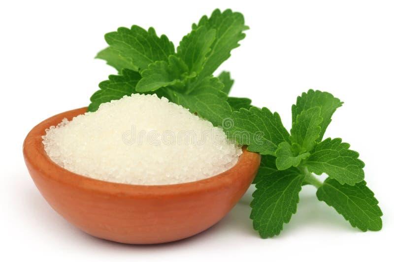 Stevia avec du sucre sur une cuvette brune photo libre de droits