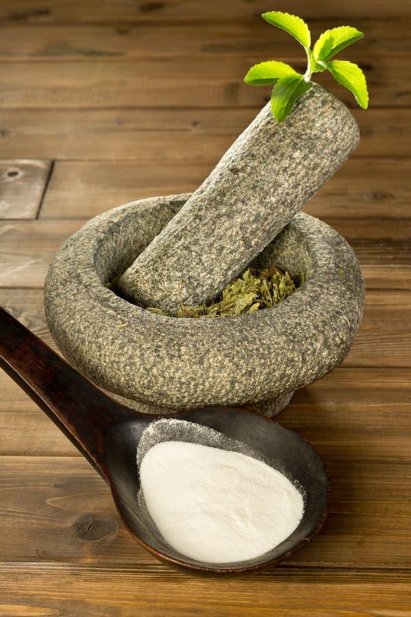 Stevia bianco e verde fotografia stock libera da diritti