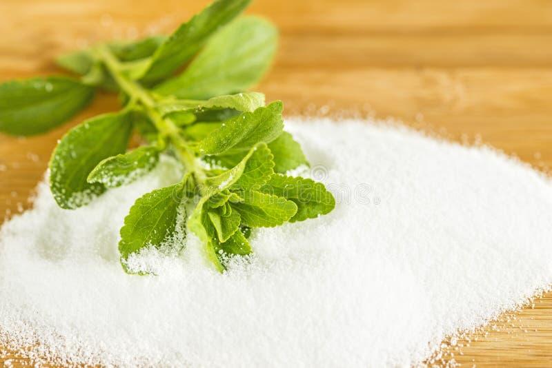 Stevia rebaudiana, support for sugar, powder stock photo