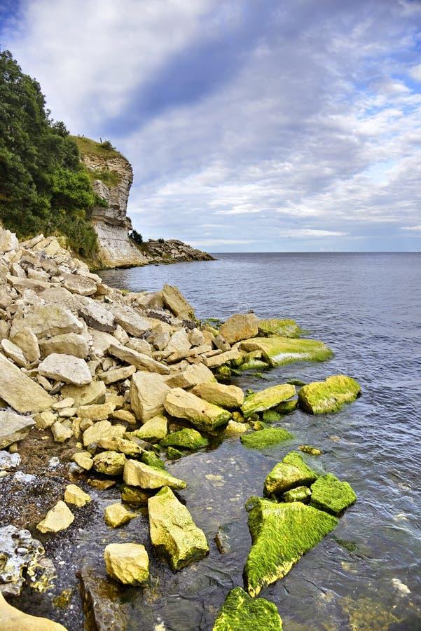 Stevns Klint Danemark photos libres de droits