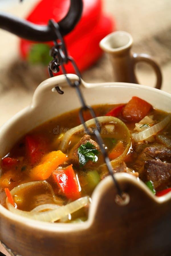 stew δοχείων βόειου κρέατος στοκ εικόνα με δικαίωμα ελεύθερης χρήσης