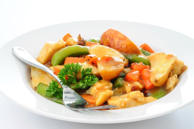 stew κοτόπουλου στοκ εικόνα