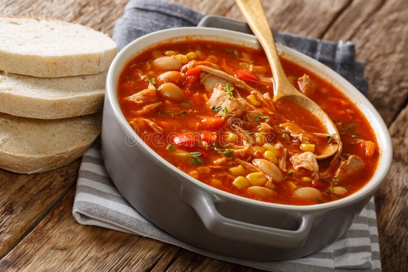 Stew του Brunswick που μαγειρεύεται πρόσφατα από το τργμένο κρέας με τα λαχανικά, στοκ φωτογραφία με δικαίωμα ελεύθερης χρήσης