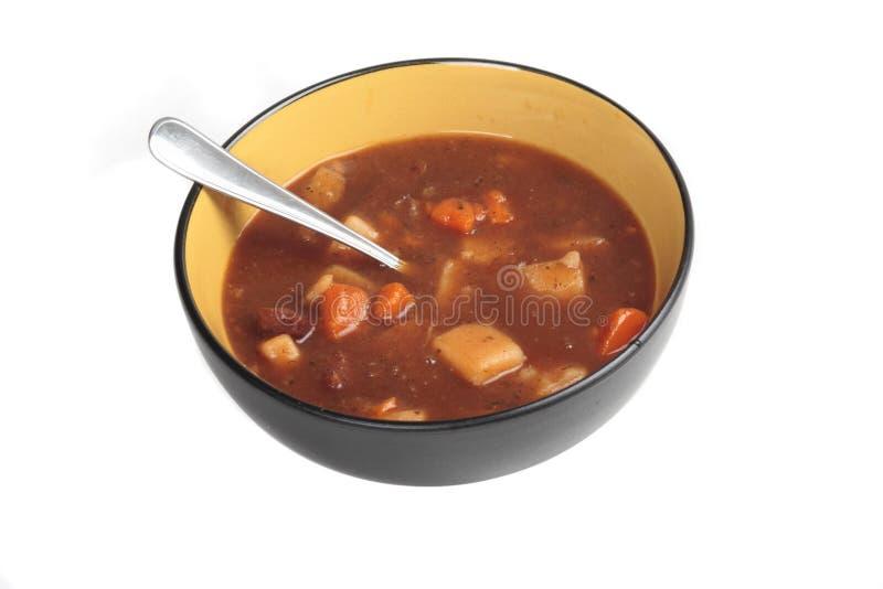 stew говядины стоковое фото