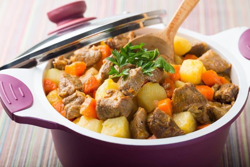 stew royaltyfri foto