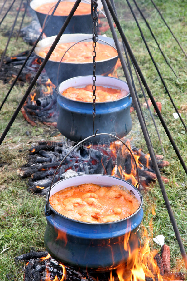 stew obrazy royalty free