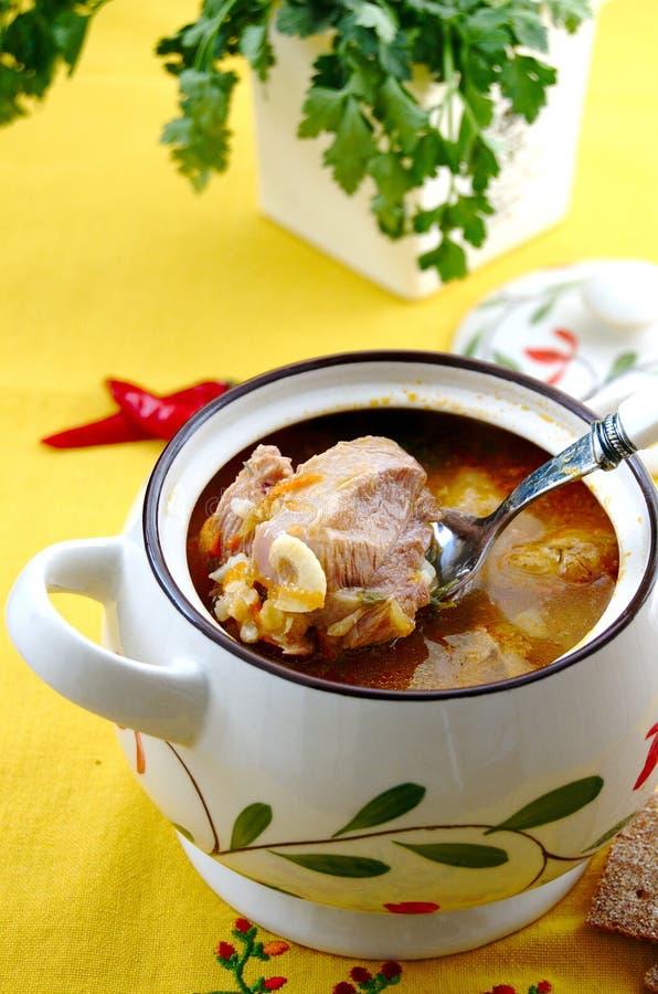 stew стоковая фотография rf