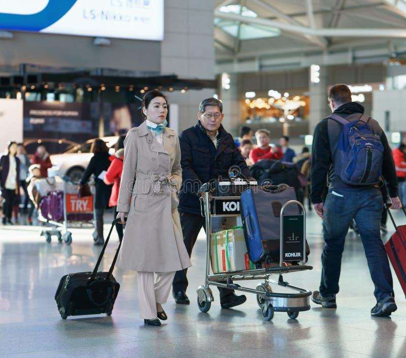 Steward (hôtesse de l'air) féminin asiatique à l'airpo d'international d'Incheon photos stock