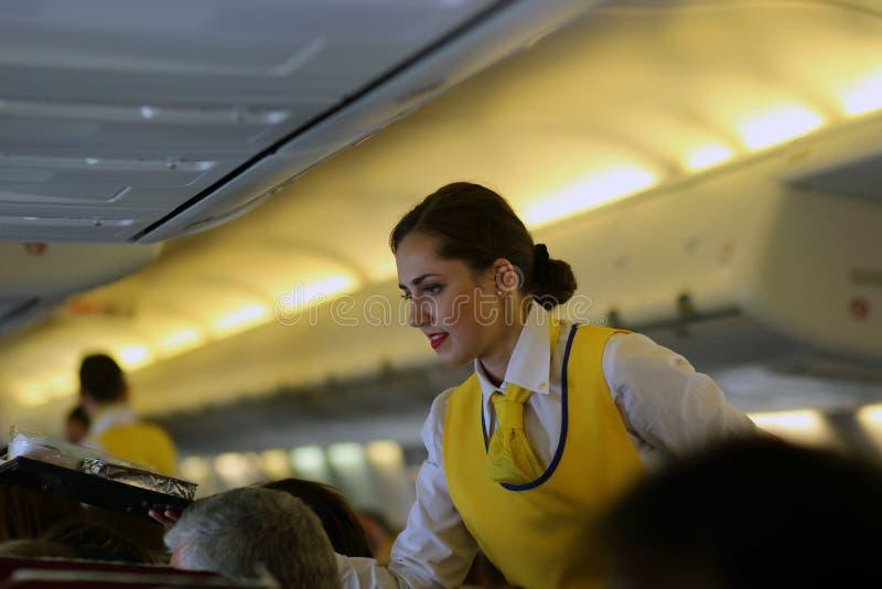 Stewardesa na samolocie fotografia royalty free