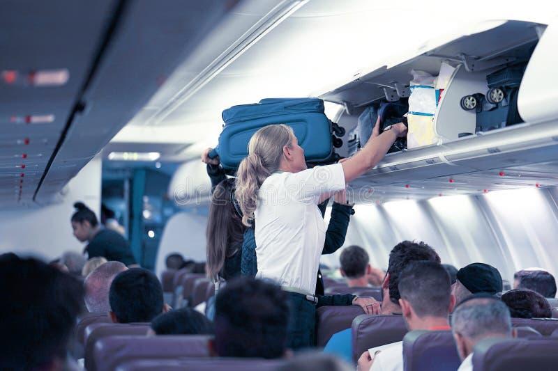 Stewardess i flygplanet royaltyfri bild