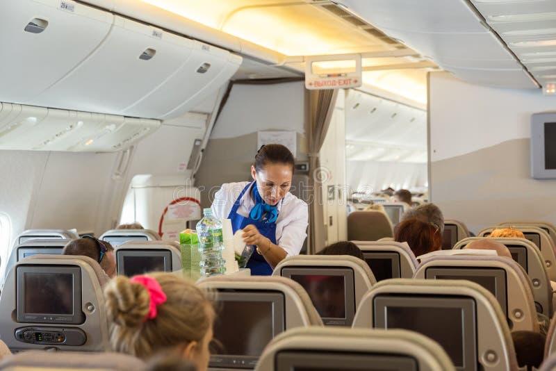 Stewardess im Flugzeug stockbild