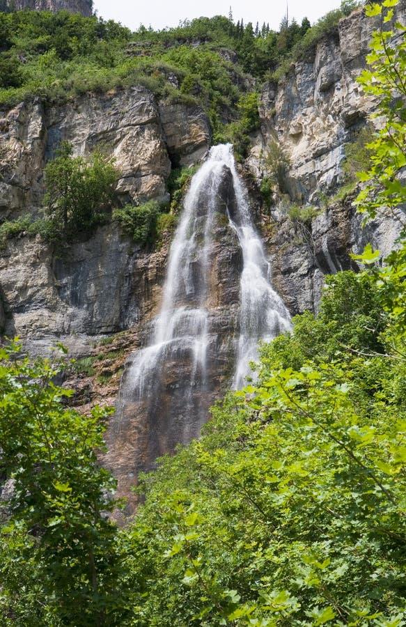 Stewart Falls in Utah royalty-vrije stock foto's