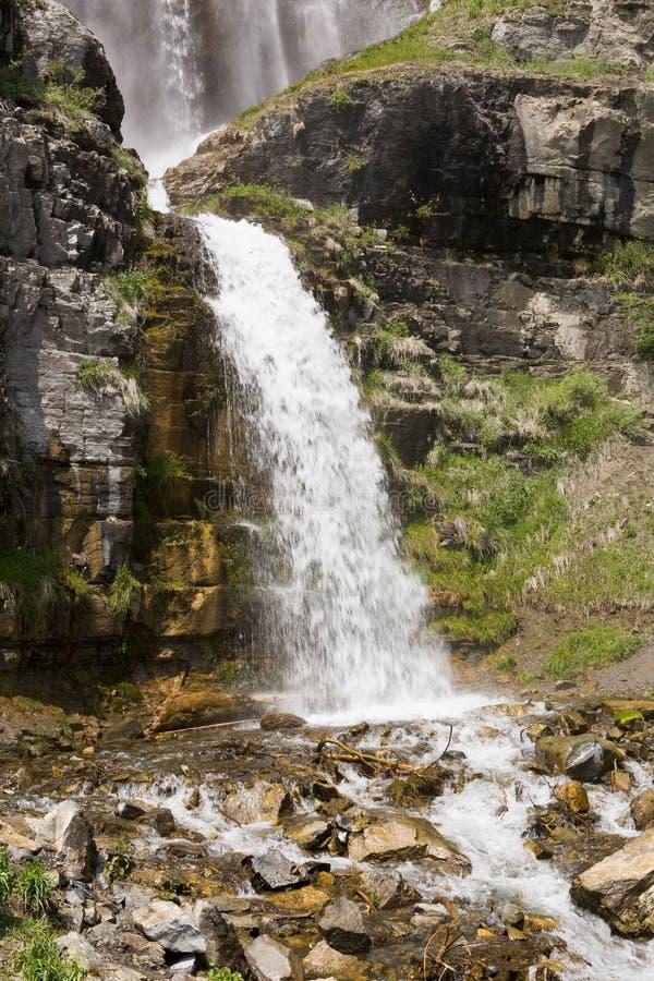 Stewart Falls in Utah stock foto's