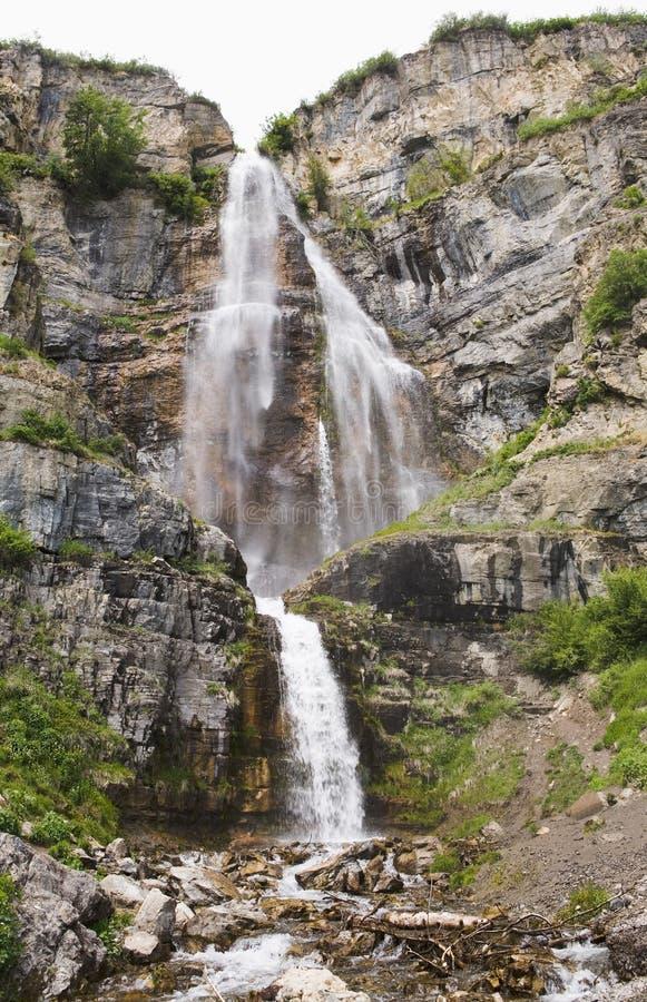 Stewart Falls in Utah stock afbeelding