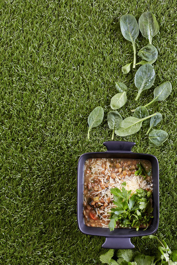 Stewed sprouted lentil on artificial turf. A top view image of stewed sprouted lentil decorated with parsley on artificial turf royalty free stock photography