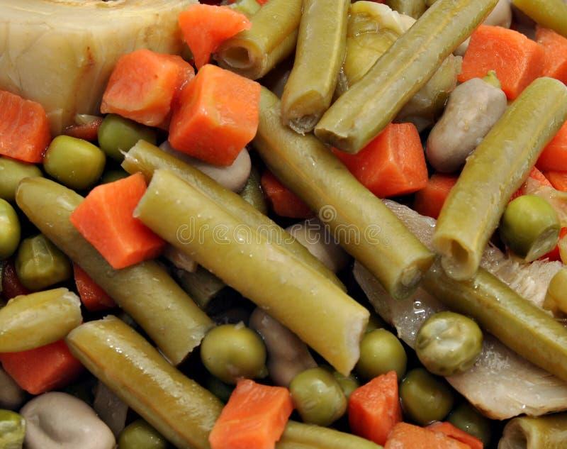 Download Stewgrönsak fotografering för bildbyråer. Bild av ingrediens - 19776223