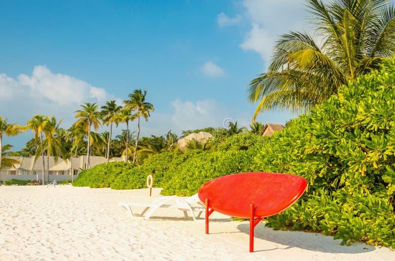 Stia sul bordo di pagaia sui precedenti della spiaggia sabbiosa esotica, Maldive immagini stock