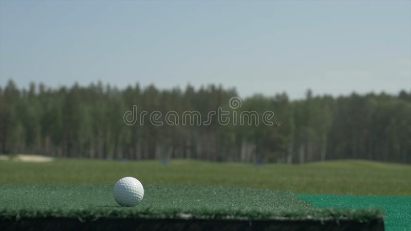 The stick on the ball. A golf club on a golf course. Golf equipment, golf ball and stick. Sport Course stock photo