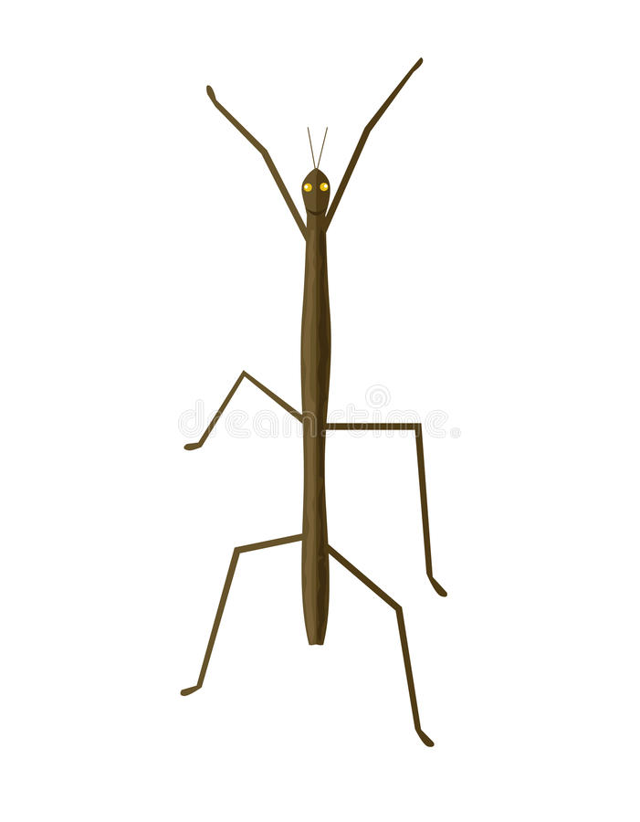 Stick Insect or Phasmids Icon vector illustration