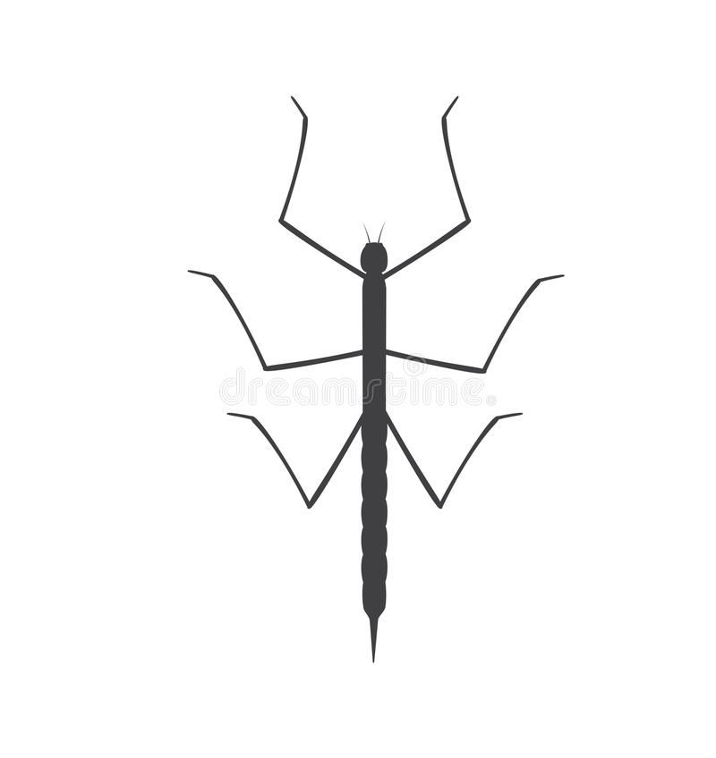 Stick Insect Silhouette Stock Vector Illustration Of Pictogram