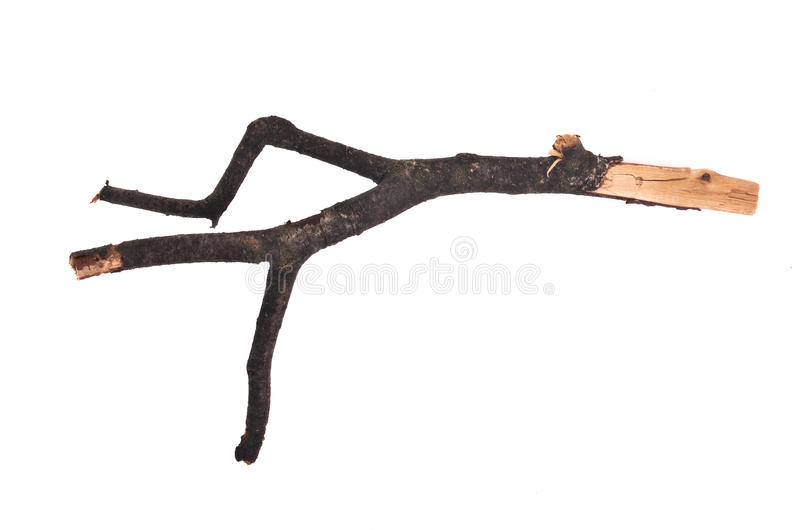 Download Stick Or Twig Royalty Free Stock Image - Image: 22213636