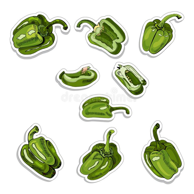 Stickers of green hand drawn sweet peppers. Ink and colored sketch on white background. stock illustration