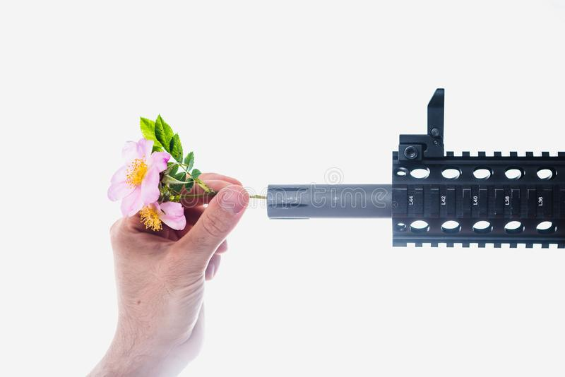 Sticking Flowers into Gun Barrel. Hippie, power, weapon, war, love, peace, rifle, pacifist, hippies, hand, white, close, sweet, briar, defense, defend, leaf stock photo