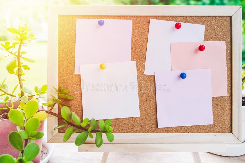 Sticky note on cork board with little tree,garden background in royalty free stock photo