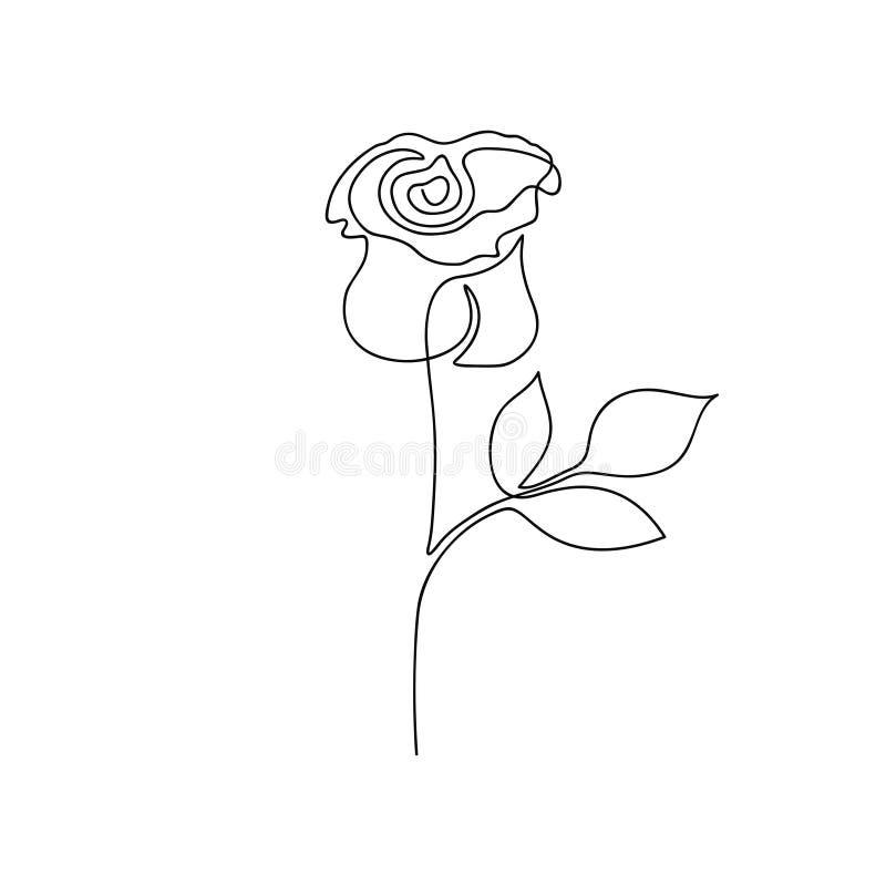 stieg ein Federzeichnung Ununterbrochene Linie stieg Blume Von Hand gezeichnete unbedeutende Illustration vektor abbildung