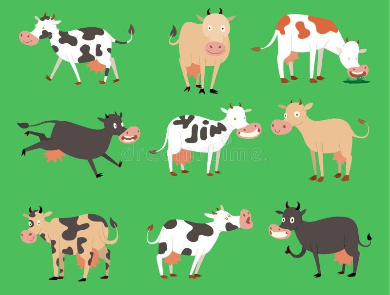 Stier van de melk kleurt de vectorkoe met de verschillende koeien van kalfsbuffels melkveehouderijrundvlees, dieren van het aard  vector illustratie