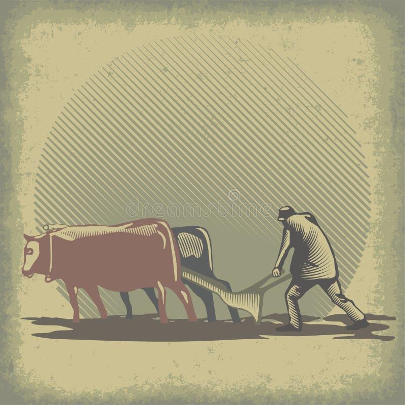 Stiere und Egge stock abbildung