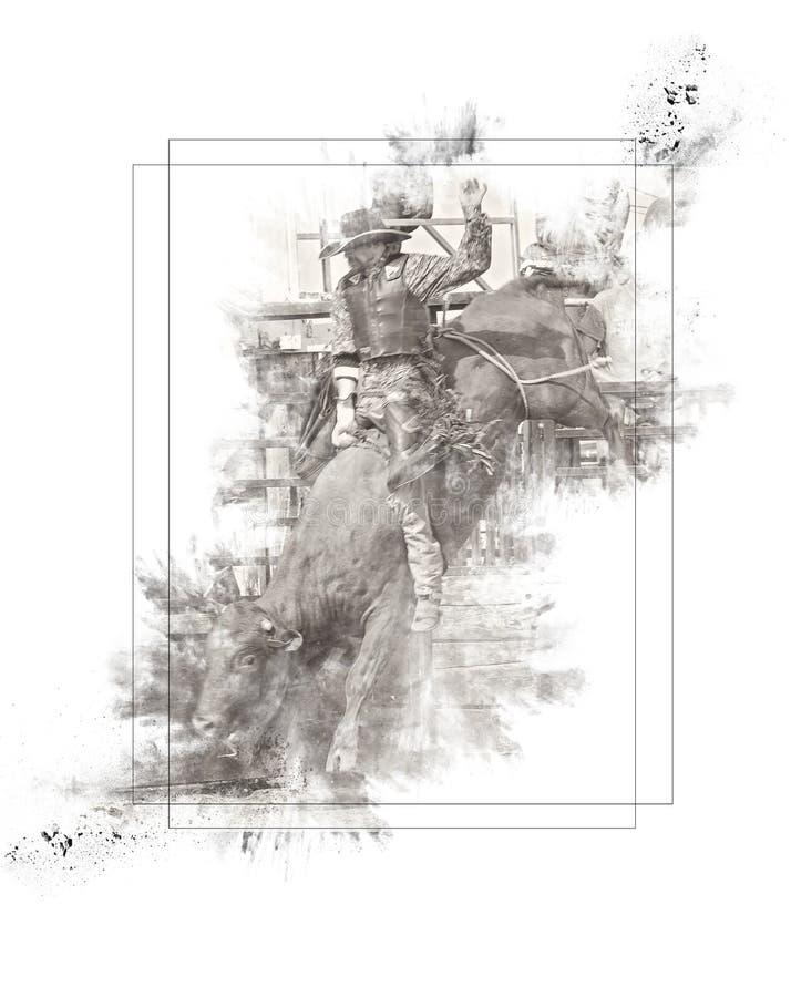 Stierenruiter stock afbeeldingen