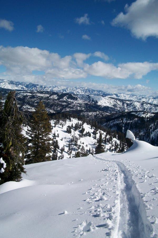 Stigande Backcountry skidar spår med blå himmel arkivfoton