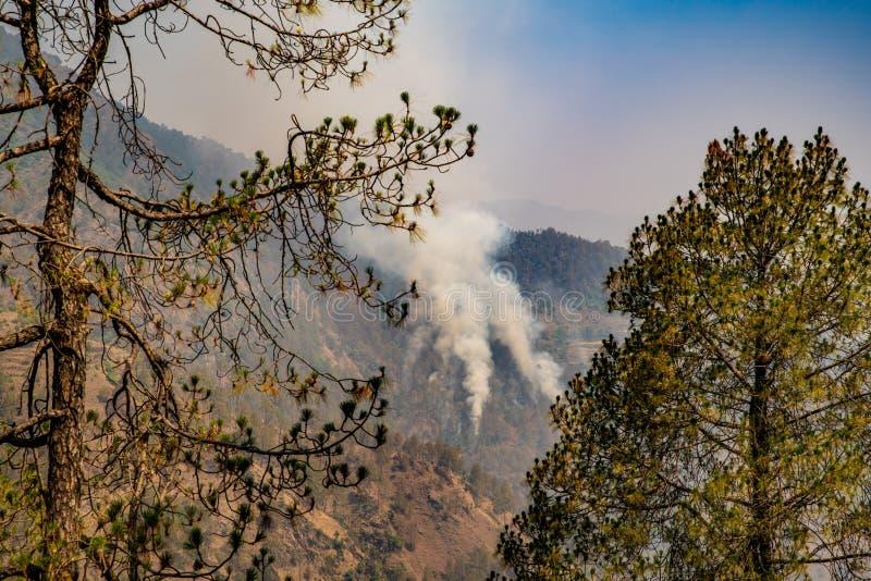 stijgende bosbranden rond de wereld royalty-vrije stock afbeelding