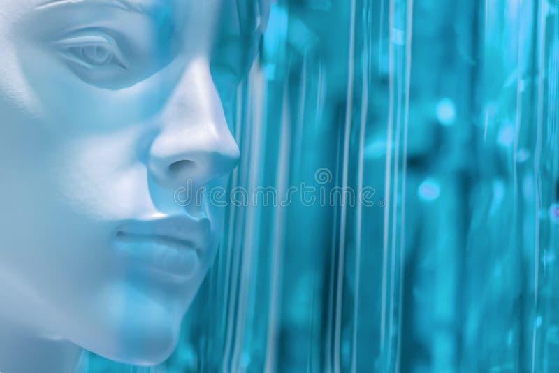 Stijlvolle schoonheid vrouwelijke mannequin kop op een wazig gekleurd lichtgroen, lichtblauw, achtergrond, lichttinten stock afbeelding