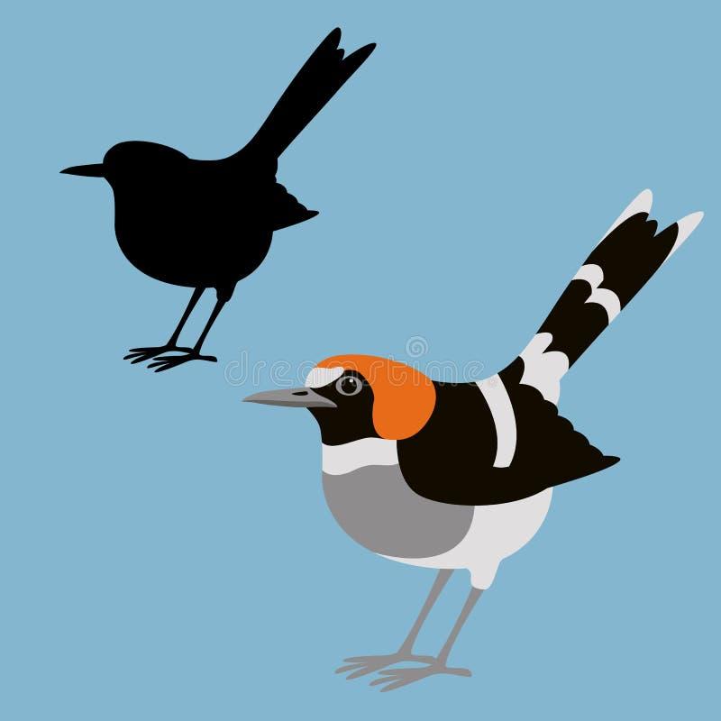 Stil för lägenhet för illustration för vektor för kastanj-napedforktailfågel royaltyfri illustrationer