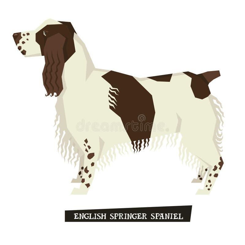 Stil för spaniel för engelsk Springer för hundsamling geometrisk royaltyfri illustrationer