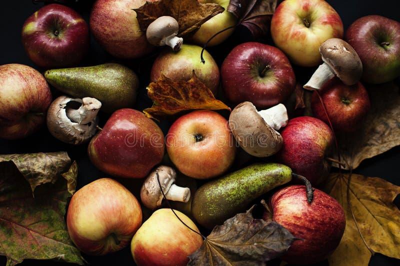 Stil-vita di autunno fotografia stock