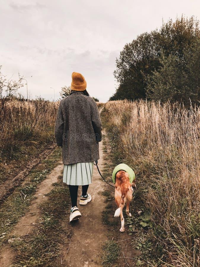 Stilata ragazza di Hipster con cappello giallo e cappotto che cammina con il suo cane dorato in cappotto nel campo autunnale tra  fotografia stock
