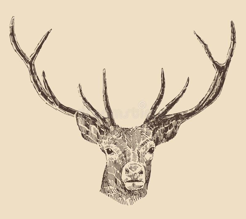 Stile capo dell'incisione dei cervi royalty illustrazione gratis